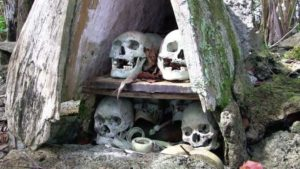 «Страшные» Соломоновы острова: в гости к каннибалам