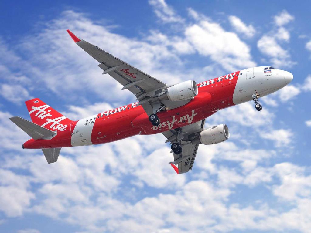 Спасти маленького пассажира на борту самолёта не удалось