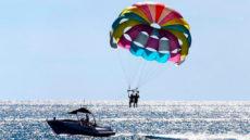 Туристы упали с 20-метровой высоты с парашютом на пальмы, когда начался сильный ветер