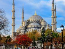 «Дельфин» взял курс на Турцию